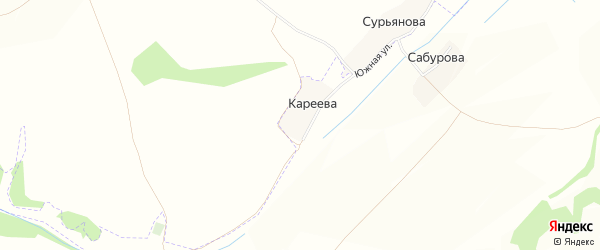 Карта деревни Кареева в Брянской области с улицами и номерами домов
