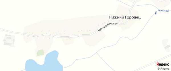 Центральная улица на карте деревни Нижнего Городца с номерами домов