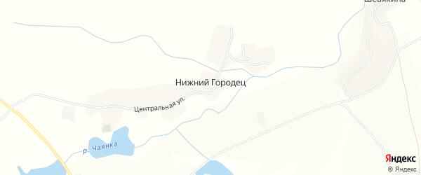 Карта деревни Нижнего Городца в Брянской области с улицами и номерами домов