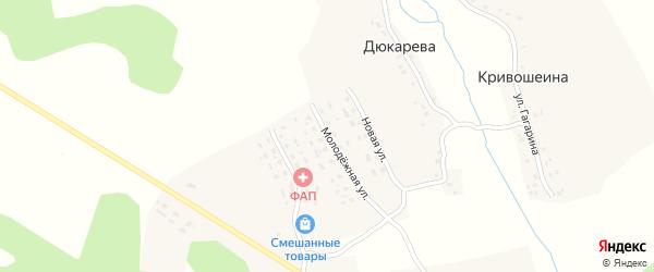Молодежная улица на карте деревни Алексеева с номерами домов