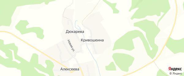 Карта деревни Кривошеиной в Брянской области с улицами и номерами домов