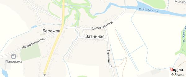 Заречная улица на карте Затинной деревни с номерами домов