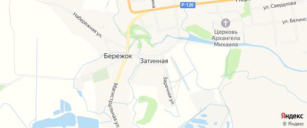 Карта Затинной деревни в Брянской области с улицами и номерами домов