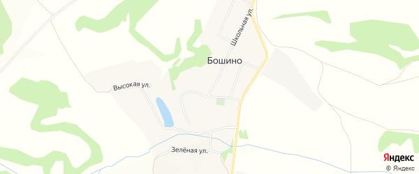 Карта села Бошино в Брянской области с улицами и номерами домов