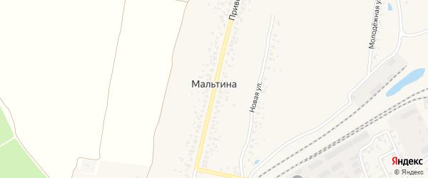 Садовая улица на карте деревни Мальтиы с номерами домов