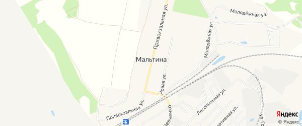 Карта деревни Мальтиы в Брянской области с улицами и номерами домов