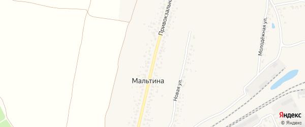 Привокзальная улица на карте деревни Мальтиы с номерами домов