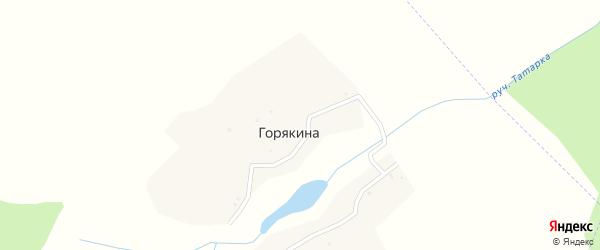 Улица Березовая Роща на карте деревни Горякиной с номерами домов