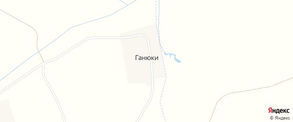 Профсоюзная улица на карте деревни Ганюки с номерами домов