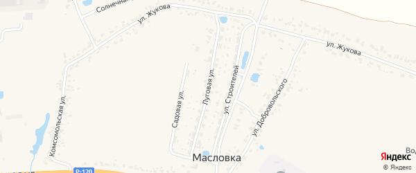 Луговая улица на карте деревни Масловки с номерами домов