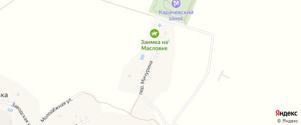 Переулок Мичурина на карте деревни Масловки с номерами домов