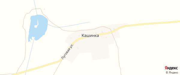 Луговая улица на карте деревни Кашинки с номерами домов