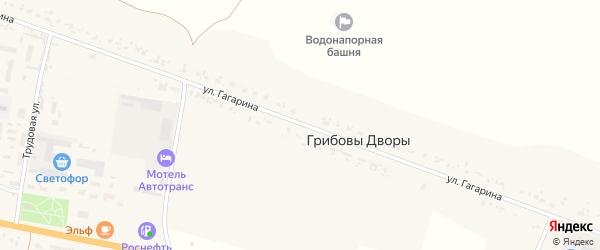 Улица Гагарина на карте деревни Грибовы Дворы с номерами домов