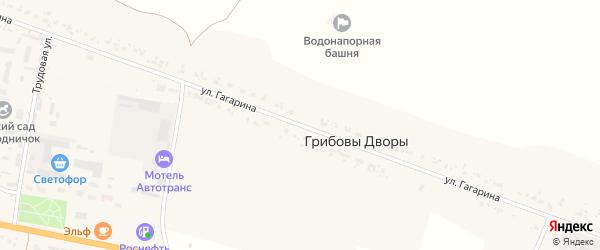 Улица Гагарина на карте деревни Кривошеиной с номерами домов