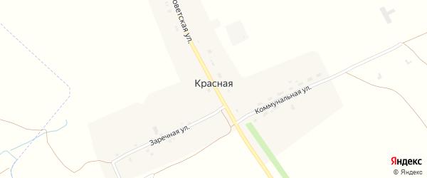 Коммунальная улица на карте Красной деревни с номерами домов
