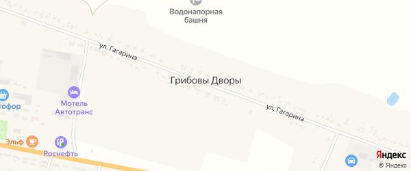 Территория ТнВ Родина на карте деревни Грибовы Дворы с номерами домов