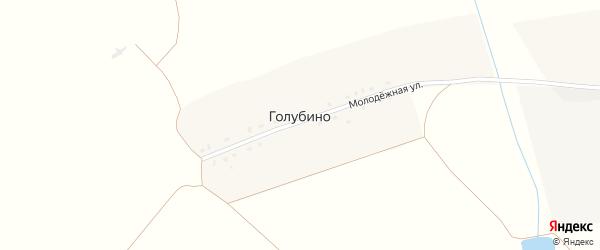 Молодежная улица на карте деревни Голубино с номерами домов