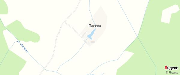Карта деревни Пасеки в Брянской области с улицами и номерами домов