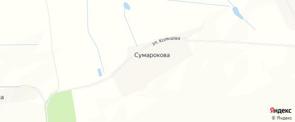 Карта деревни Сумарокова в Брянской области с улицами и номерами домов
