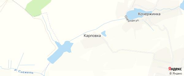 Карта деревни Карповки в Брянской области с улицами и номерами домов