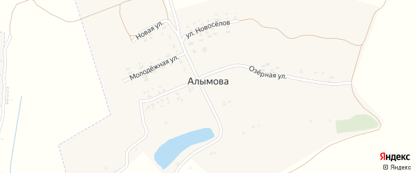 Улица Новоселов на карте села Алымова с номерами домов