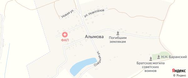 Цветочная улица на карте села Алымова с номерами домов