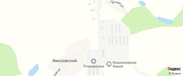 Центральная улица на карте Амозовского поселка с номерами домов