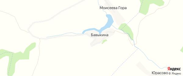 Карта деревни Бавыкиной в Брянской области с улицами и номерами домов