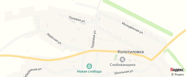 Трудовая улица на карте села Колотиловки с номерами домов