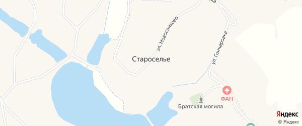 Улица Новосанкова на карте села Староселья с номерами домов