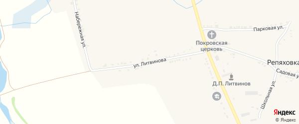 Улица Литвинова на карте села Репяховки с номерами домов