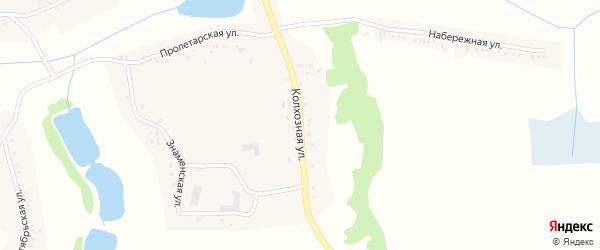 Колхозная улица на карте Вязового села с номерами домов