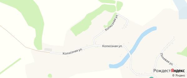 Колхозная улица на карте села Рождественки с номерами домов