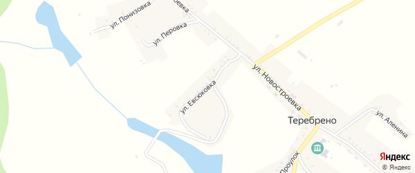 Улица Евсюковка на карте села Теребрено с номерами домов