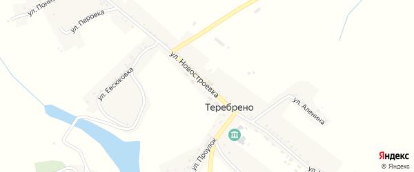 Улица Новостроевка на карте села Теребрено с номерами домов