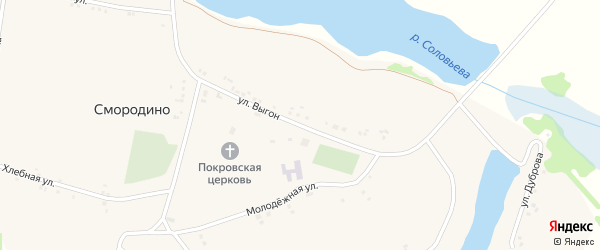 Улица Выгон на карте села Смородино с номерами домов