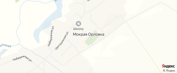 Карта села Мокрой Орловки в Белгородской области с улицами и номерами домов