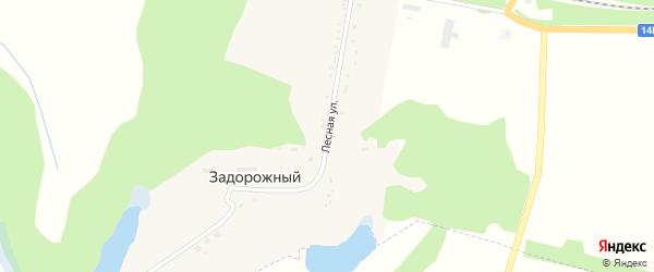 Лесная улица на карте Задорожного поселка с номерами домов