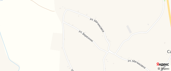 Улица Березник на карте села Санково с номерами домов