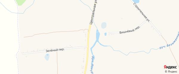 Центральная улица на карте села Козинки с номерами домов