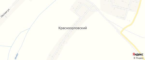Луговая улица на карте Красноорловского хутора с номерами домов