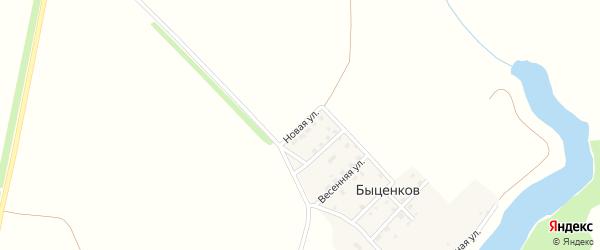 Новая улица на карте поселка Быценкова с номерами домов