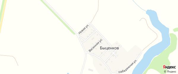 Молодежная улица на карте поселка Быценкова с номерами домов