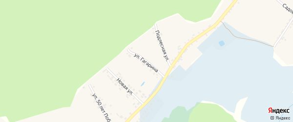 Улица Гагарина на карте села Замостья с номерами домов