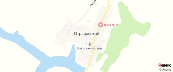 Полевая улица на карте Отрадовского поселка с номерами домов