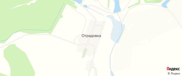 Карта села Отрадовки в Белгородской области с улицами и номерами домов