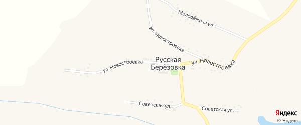 Улица Новостроевка на карте села Русской Березовки с номерами домов