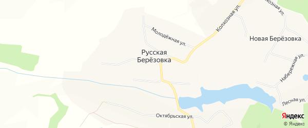 Карта села Русской Березовки в Белгородской области с улицами и номерами домов