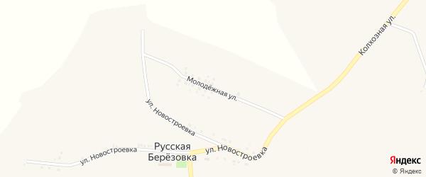 Молодежная улица на карте села Русской Березовки с номерами домов