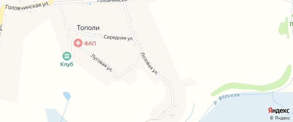 Лозовая улица на карте хутора Тополи с номерами домов